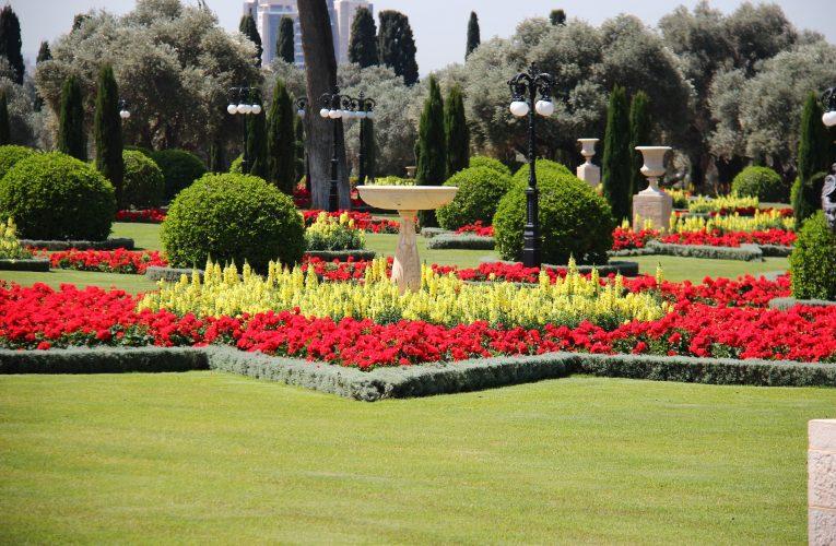 How to Decorate a Garden – Basic Principles